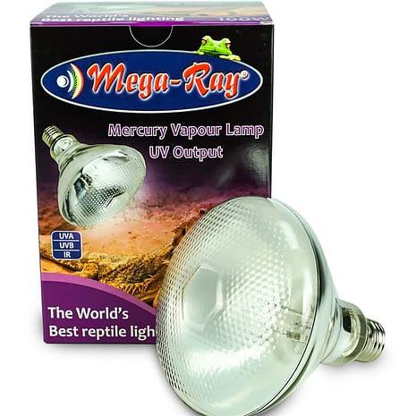 uvb light for bearded dragon