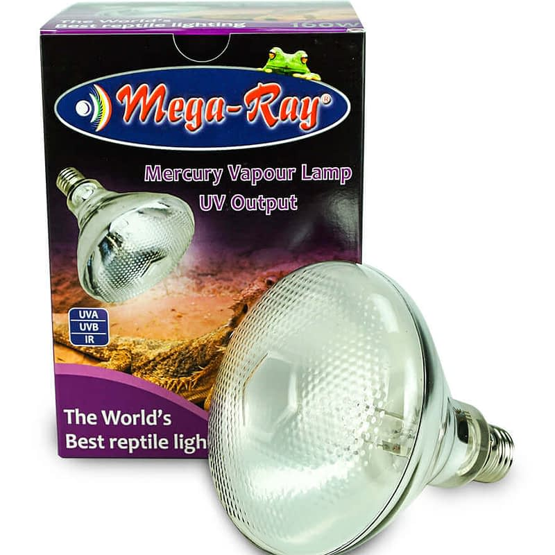 uvb light for bearded dragon